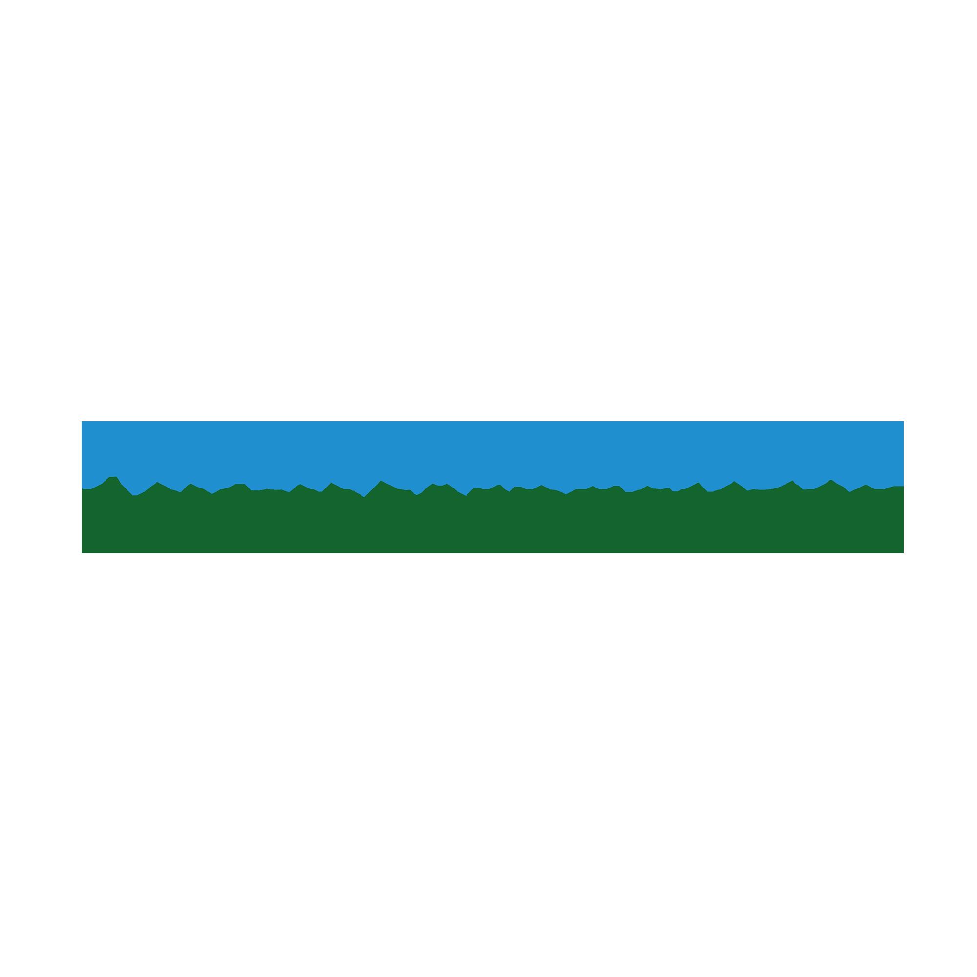 Programmering av RCH kassaregister